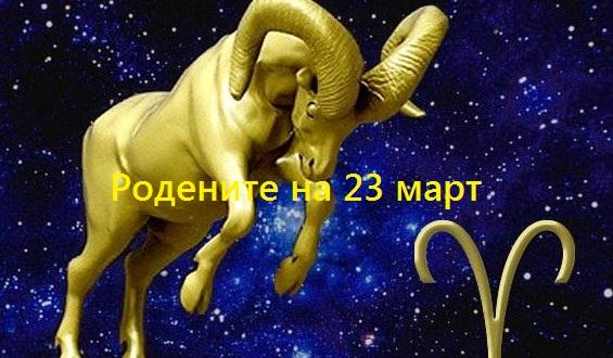 23ovn