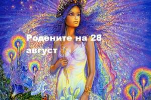 28dev