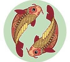 риби1